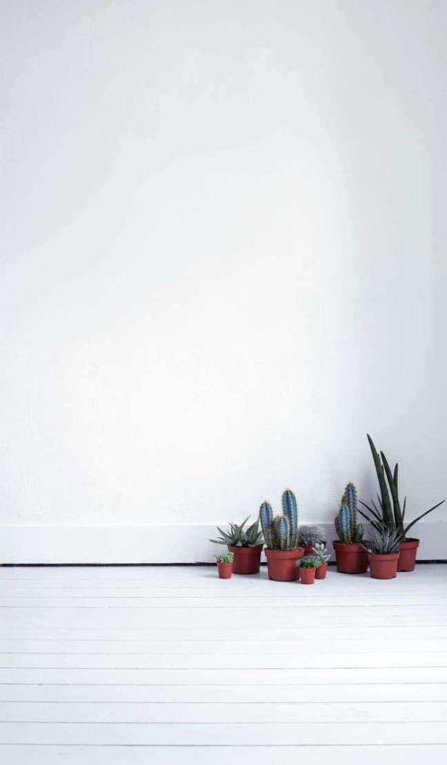 01_decoracao-cactus