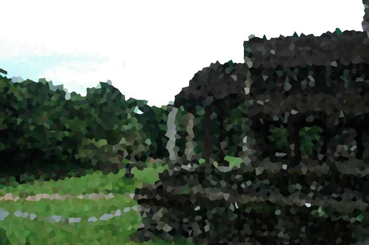DSC_2880 pixelate
